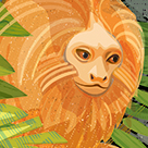 Illustration in a series, On the Edge, of a Golden Lion Tamarin viewing the destruction and deforestation of its home in Brazil.